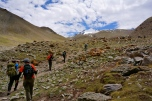 Approaching Base Camp